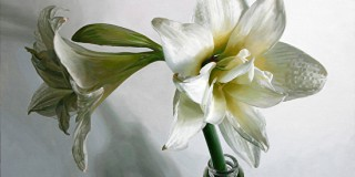 amaryllis-and-milk-bottleSusanOber
