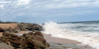 Coquina Rocks at Washington Oaks Gardens State Park