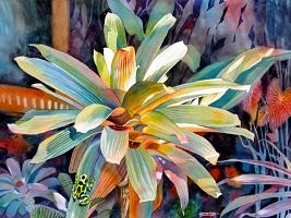 Danecke_BromeliadAndFrog_Watercolor
