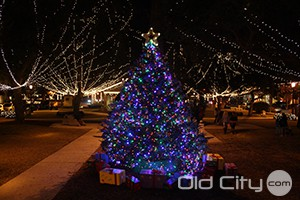 Nights of Lights Christmas Tree in the Plaza