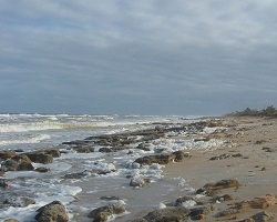 Shoreline Near Marineland