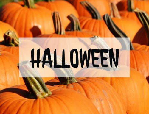 What's happening this Halloween 2016 season in and around St. Augustine?