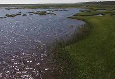 GTM Estuary