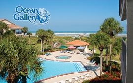The Ocean Gallery