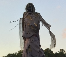 Scarecrow at Rype & Readi Farm