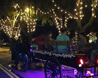 Nights of Lights Wine & Carriage Tours