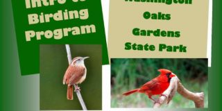 Intro to Birding Program at Washington Oaks