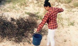 Beach Clean Up by Volunteer