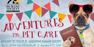 Adventures in Pet Care