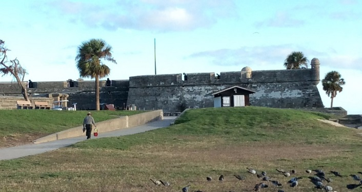 Image contains outdoors, the Castillo de San Marcos, people, and birds.