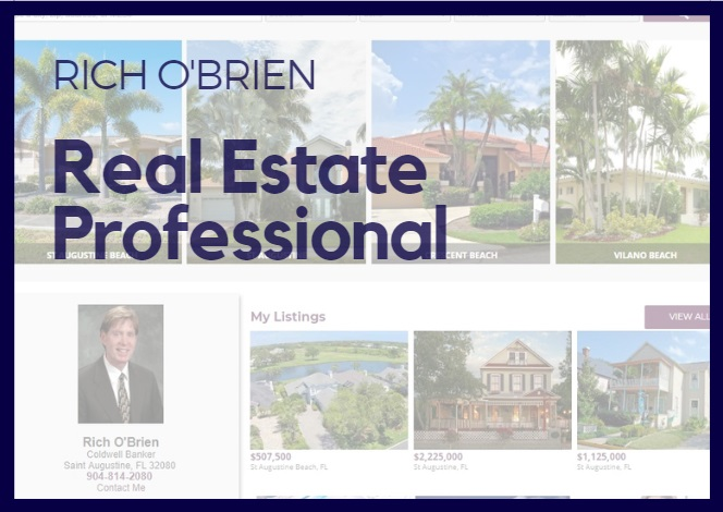 Real Estate Professional