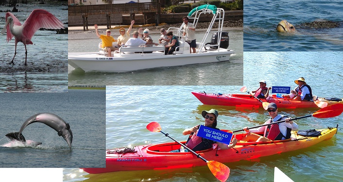 images of kayakers, people on tour boats with
