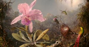 Cattleya Orchid and Three Hummingbirds, on display at the St Augustine Art Association for Wild St. Augustine: Musings on Art