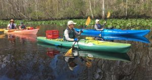 Join us for Nocatee Kayak Trip, a guided trip of the Intracoastal Waterway. Participants will learn about the complex salt marsh habitat and the plants and animals that call the marsh home.