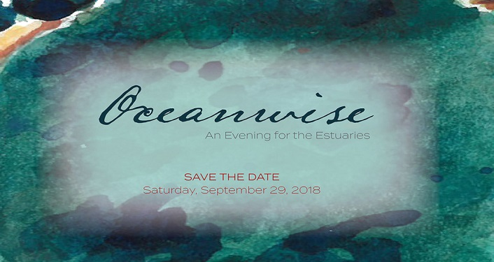 Come celebrate the estuary at Oceanwise: An Evening for the Estuaries