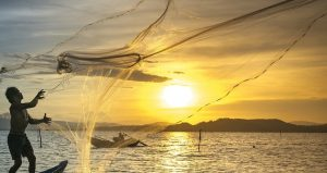 Learn how to throw a Casting Net at Florida Fishing: Know Before You Go