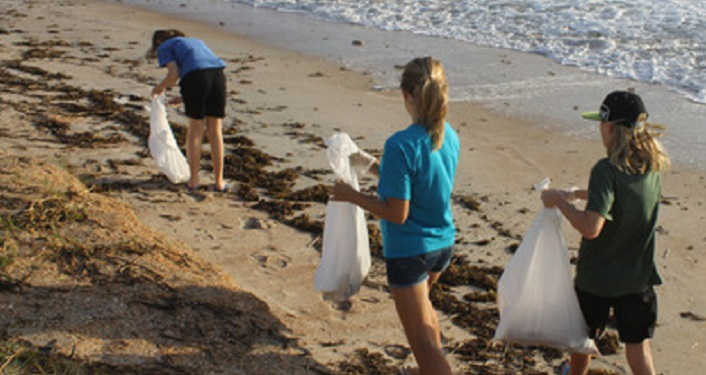 Volunteers removing trash during International Coastal Cleanup