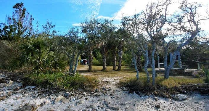 image of wooded trail to the Matanzas River, there are trees and some white sand; found on Marineland River-to-Sea Trail Walk