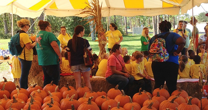 Come to the Pumpkin Patch at Shores UMC for your choice of pumpkins.