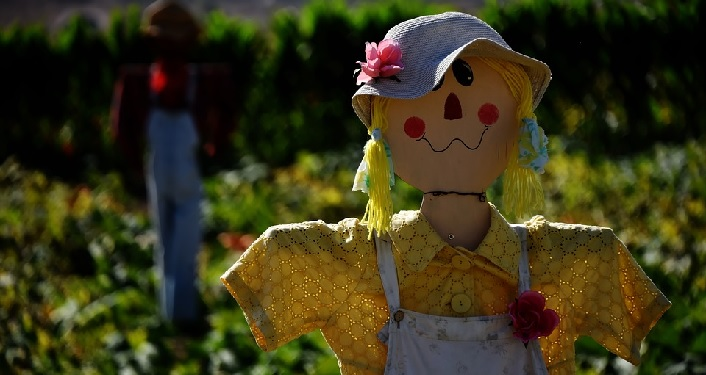 An image of a scarecrow with a yellow shirt and blue hat.