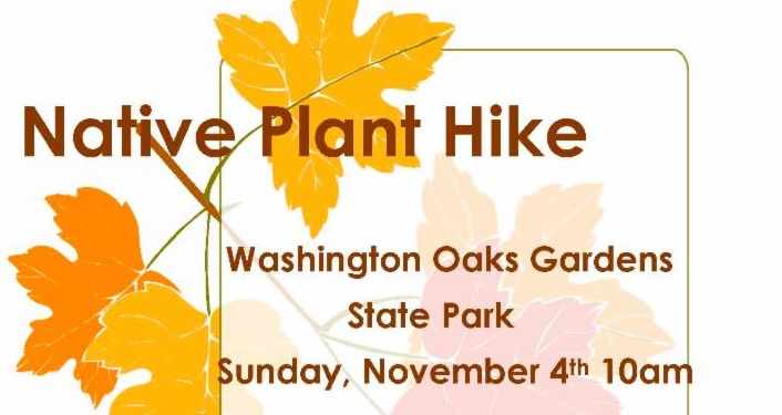 Learn the importance of native plants on the Native Plant Hike.
