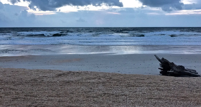image of waves rolling in on the beach at GTM Reserve, accessed during GTM Beach Exploration