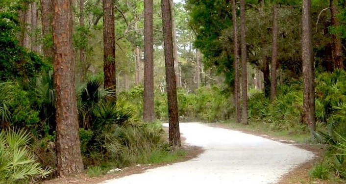 Explore one of the park trails at Faver-Dykes State Park on a one-hour, guided First Day Hike with a Park Ranger.