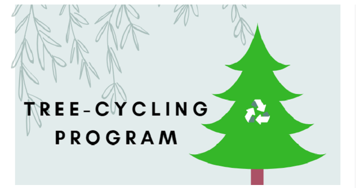"St. Johns County is hosting its' Annual Christmas ""Tree-cycling"" Program for those who wish to recycle Christmas trees after the holiday."