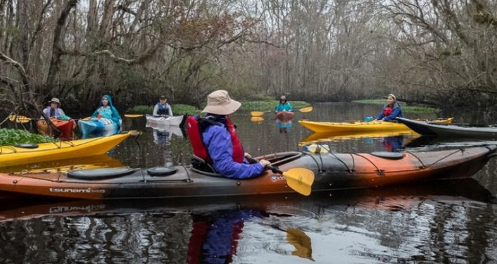 image of several kayakers on a creek