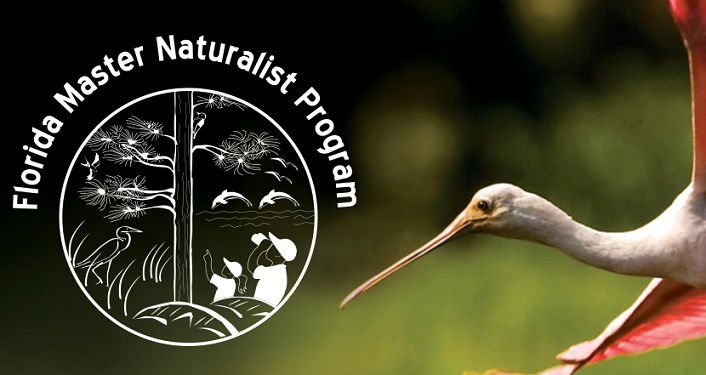 Florida Master Naturalist logo plus head of spoonbill