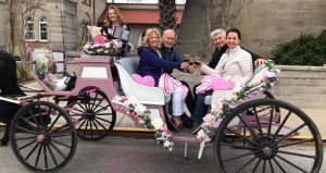 Grab your sweetie and join us for a 3 hour food/wine pairing tour or a private carriage for your Valentine Carriage Rides and Culinary Tours with The Tasting Tours.