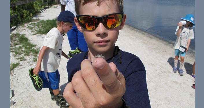 young boy holding small crab on his finger during Estuary Summer Camp. Another young boy in the background