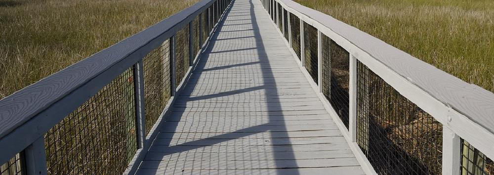 Image contains a boardwalk over a marsh.