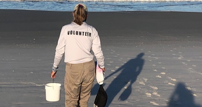 image of woman on the beach with bucket in hand walking towards shore; wearing shirt with Volunteer on the back. GTM Volunteer
