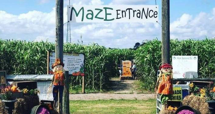 photo of crop maze in background, with scarecrows and haybales on either side of entrance to The Sykes Family Farms Crop Maze