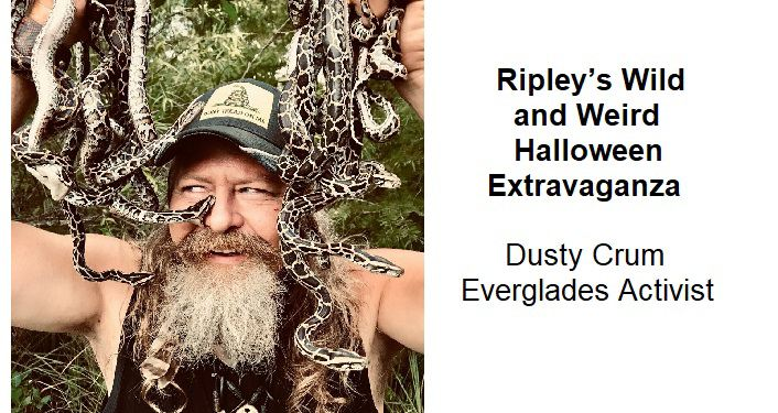 text on right, Ripley's Wild and Weird Halloween Extravaganza Dusty Crum Everglads Activist; on left grey-bearded man, wearing ball cap, surrounded by lots of snakes he's holding in his hands.