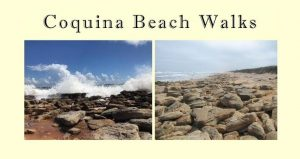 two images of the coquina rocks on the beach at Washington Oaks with text Coquina Beach Walks
