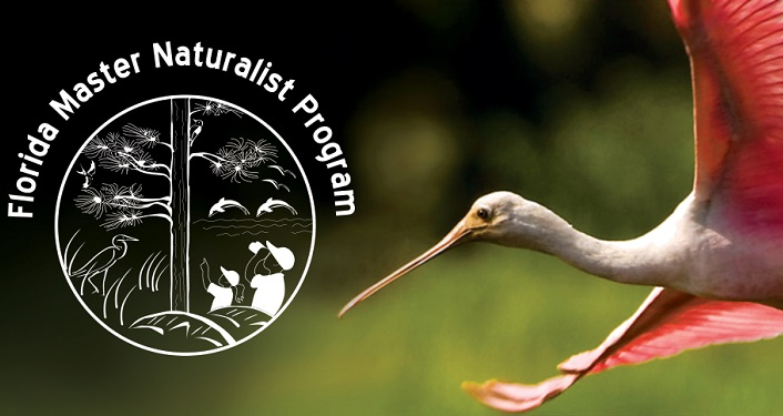 text in white, Florida Master Naturalist Program; on right is image of rosetta spoonbill in flight
