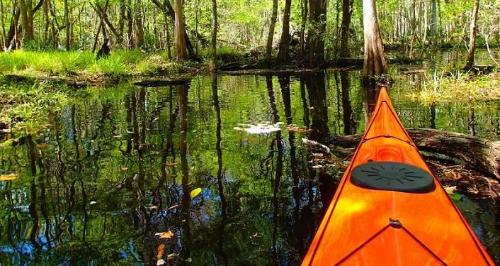 Trout Creek Kayak Trips