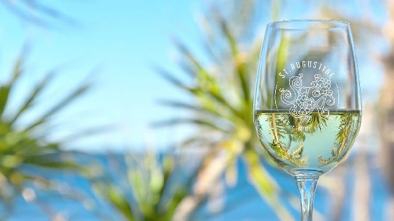 Half-full glass of white wine with St. Augustine Food + Wine Festival; blue sky and water, palm fronds in background