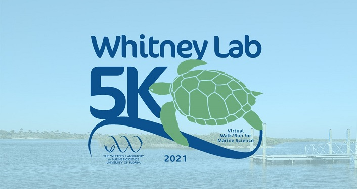 Whitney Lab Virtual 5K