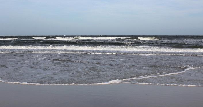 Ocean Resource Preservation Zoom Event